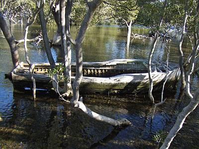 Huskisson Mangroven Boot