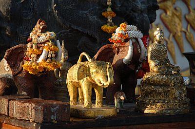 BanKrud Budda Elefant